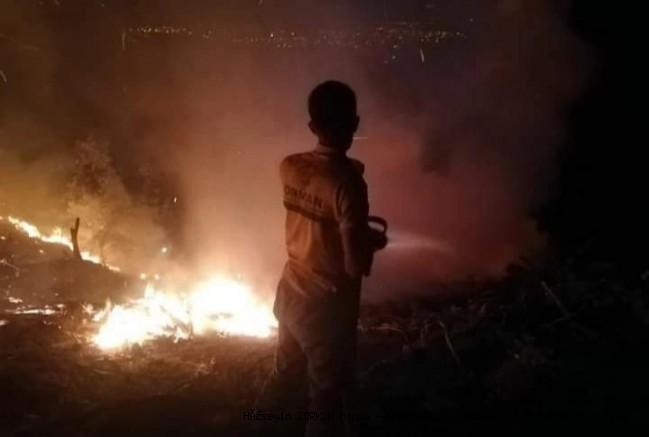 Erzin'de orman yangını...